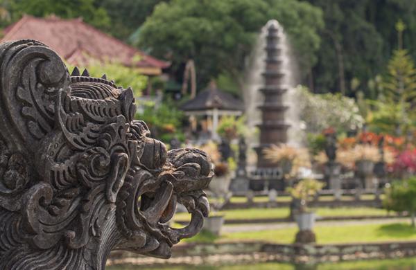 Tempat jual ikan koi di Bali